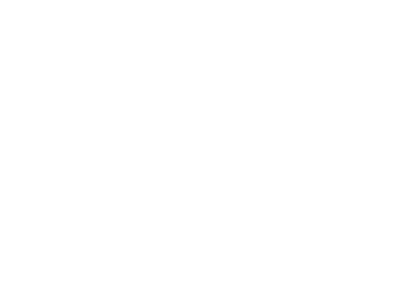 Winner Spotlight